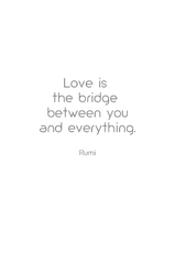 Love is  the bridge  between you and everything.  Rumi